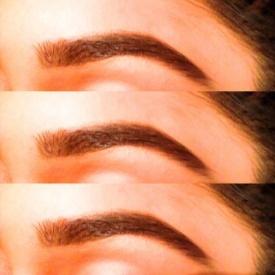 Priyas Eyebrows